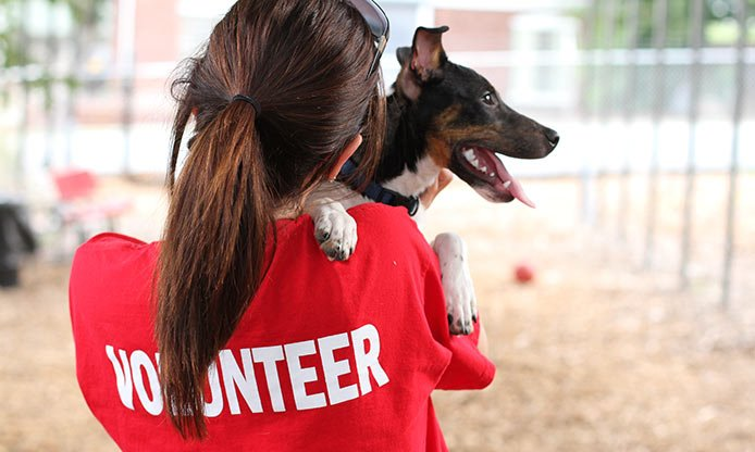 Volunteer With Dog - Teen Rehab