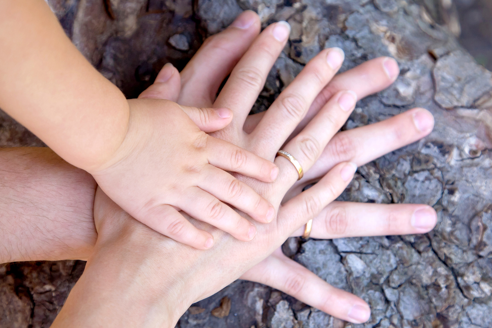 child adult hands